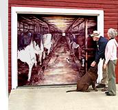 garage door muralsOutdoor Mural Art  weather resistant outdoor artwork for your